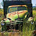 Old Green Truck by Garry Gay