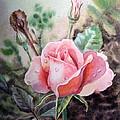 Pink Rose with Dew Drops Print by Irina Sztukowski
