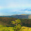 Rinca Panorama by MotHaiBaPhoto Prints
