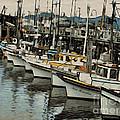 Safe Harbor 2