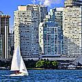 Sailing In Toronto Harbor by Elena Elisseeva