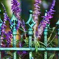 Secret Garden by Brenda Bryant