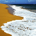 Shoreline Along Pinones by Thomas R Fletcher