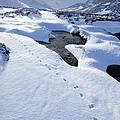 Snowy Landscape, Scotland by Duncan Shaw