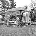 Sudbury Grist Mill  by Catherine Reusch  Daley