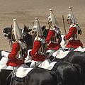 The Household Cavalry Performs by Andrew Chittock