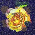 The Rose by Odon Czintos