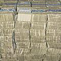Us Cash Bundles by Adam Crowley