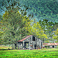 1209-1298 - Boxley Valley Barn 2 by Randy Forrester