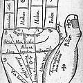 17th Century Palmistry Diagram by Middle Temple Library