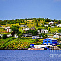 Fishing Village In Newfoundland by Elena Elisseeva