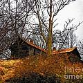 House On The Hill by Joyce Kimble Smith