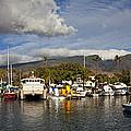 Lahaina Harbor by James Roemmling