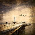 Pier by Svetlana Sewell