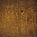 Sarcophagus Exterior by Adam Crowley