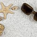 Seastar And Shells by Joana Kruse