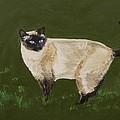 Sweetest Siamese by Leslie Allen