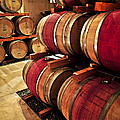 Wine Barrels by Elena Elisseeva