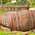 Wooden Barrels by Tom Gowanlock