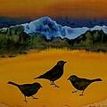3 Blackbirds by Carolyn Doe