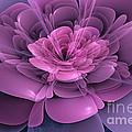 3D Flower Print by John Edwards