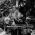 Climax Geared Locomotive by Thomas R Fletcher