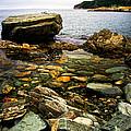Atlantic Coast In Newfoundland by Elena Elisseeva