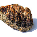 Rock From Meteorite Impact Crater by Detlev Van Ravenswaay