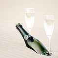 A Bottle Of Champagne With Two Glasses by Iryna Shpulak