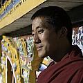A Buddhist Monk Near The Edge by David Evans
