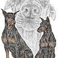 A Doberman Knows - Dobe Pinscher Dog Art Print by Kelli Swan