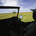 A Guide In A Jeep Observing An African by Michael Melford