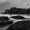 A Light In The Storm by Keith Kapple