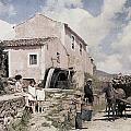 A Man Transports Wood In Terceira by Wilhelm Tobien