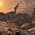 A Pack Of Carnivorous Velociraptors by Mark Stevenson