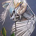 A Preening Great Egret by Teresa Smith