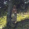 A Shady Spot by Winslow Homer