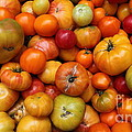 A Variety Of Fresh Tomatoes - 5d17812-long by Wingsdomain Art and Photography