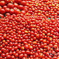 A Variety Of Fresh Tomatoes - 5d17833 by Wingsdomain Art and Photography