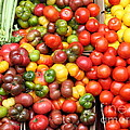 A Variety Of Fresh Tomatoes And Celeries - 5d17901 by Wingsdomain Art and Photography