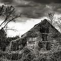 Abandoned Barn by Brenda Bryant