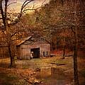 Abandoned Barn by Jai Johnson