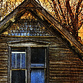 Abandoned Old House by Jill Battaglia