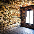 Abandoned Smoky Mountains Farm House - The Window by Dave Allen