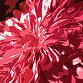 Abstract Flowers by Sumit Mehndiratta