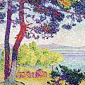 Afternoon At Pardigon by Henri-Edmond Cross