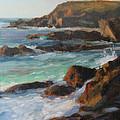 Afternoon Light Point Lobos Print by Anna Bain