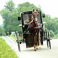 Amish Buggy On The Road by Emanuel Tanjala