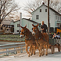 Amish Wagon by Heidi Reyher