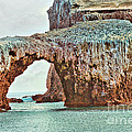 Anacapa Island 's Arch Rock by Cheryl Young